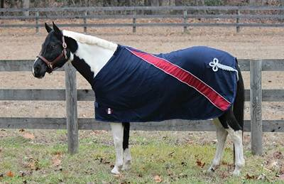 Equine Couture Regal Dress Sheet With Ornament