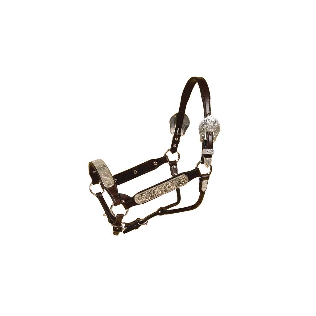 TORY LEATHER Congress Style Show Halter - Rochester Plates