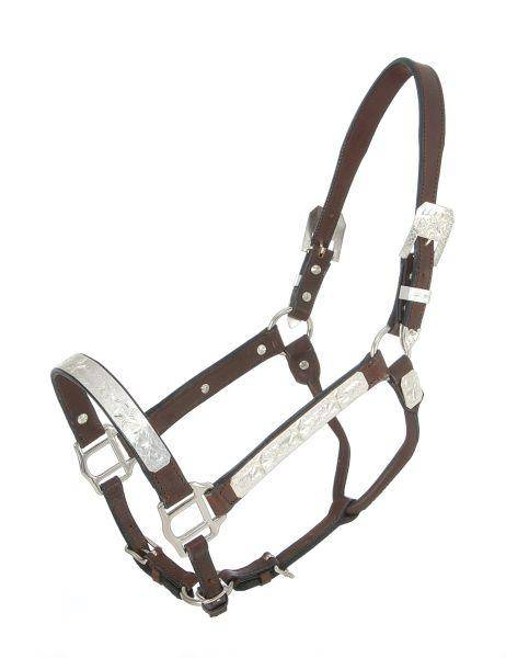 Royal King Raised Star Show Halter