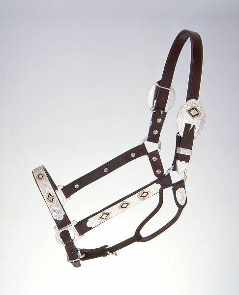 Royal King Gold & Black Silver Show Halter