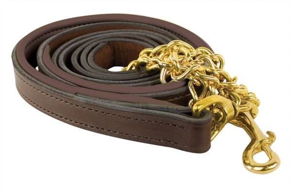 Perri's Padded Leather Lead With Chain