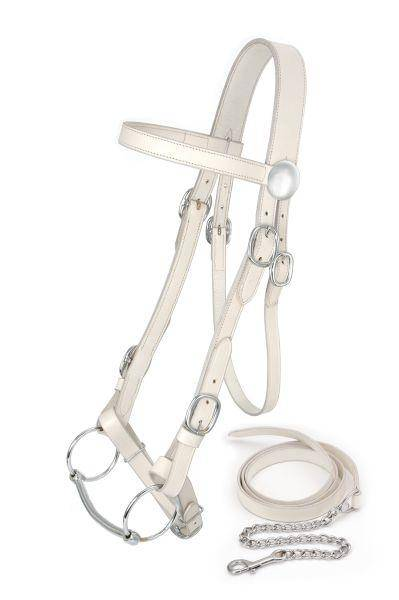 King Series Draft Horse Show Bridle