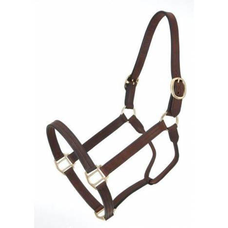 Royal King Leather Track Halter