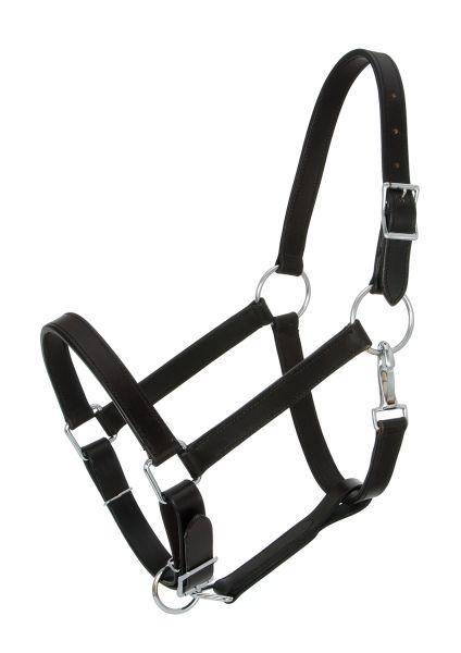 Royal King Draft Horse Stable Halter