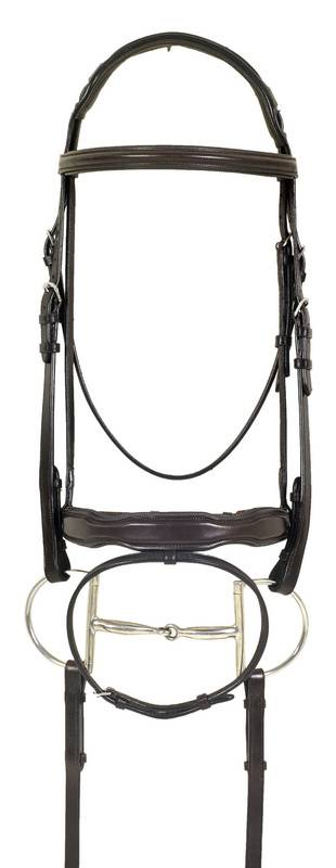 Ovation Padded Bridle with Shaped Nose and Comfort Crown - with Flash
