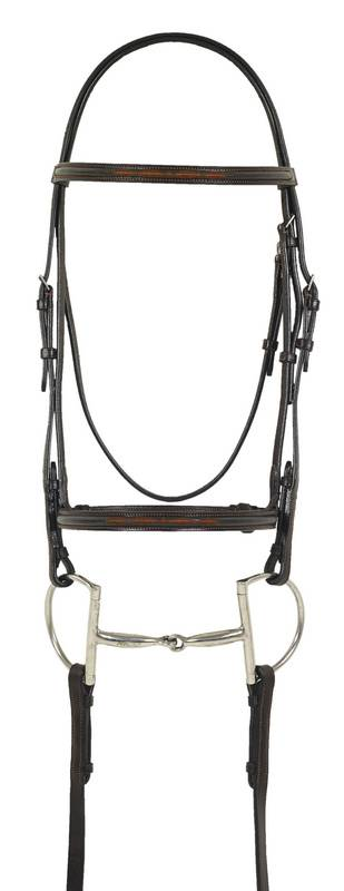 Ovation Fancy Embroidered Raised Padded Bridle