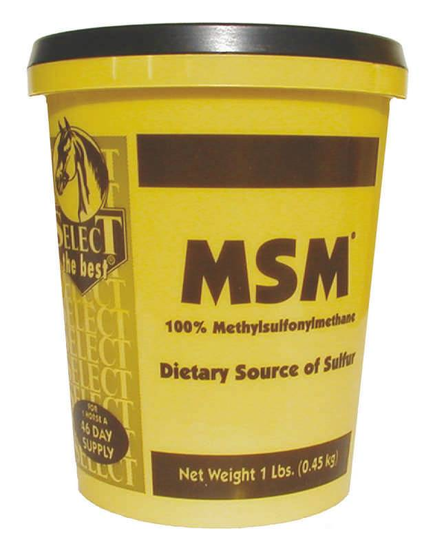 Select the Best MSM Powder
