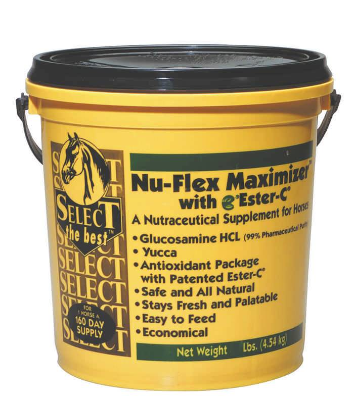 Nu-Flex Maximizer Powder