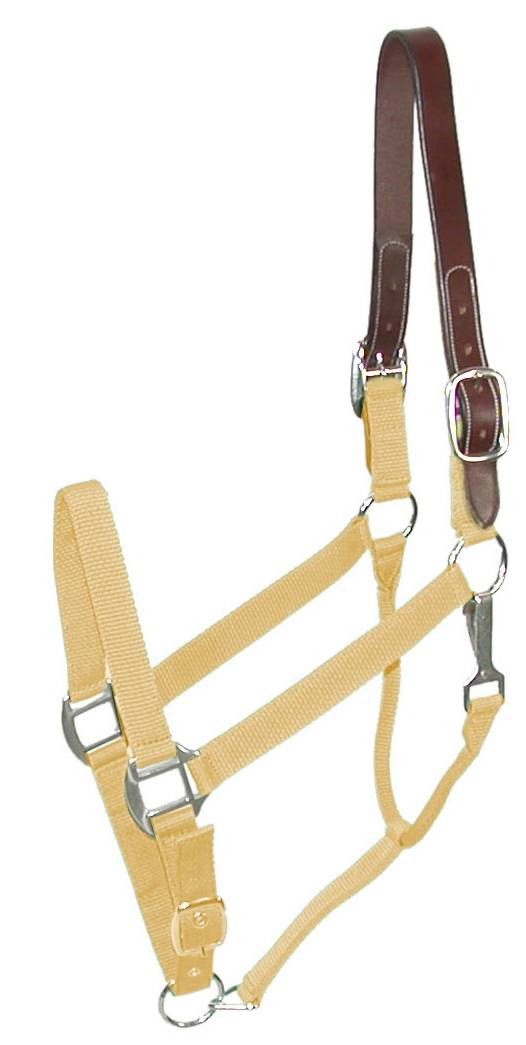 Gatsby Classic Nylon Breakaway Halter with Snap
