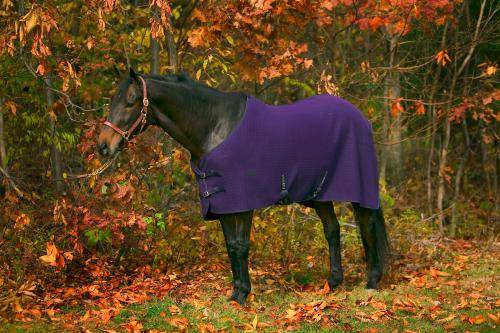 TuffRider Horse Thermo Manager Stable Sheet