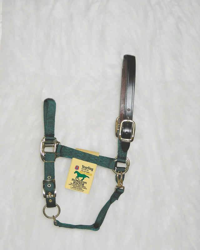 Hamilton Adjustable Halter with Leather Crown