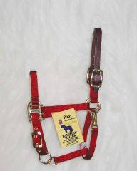Hamilton Adjustable Halter with Latigo Overlay & Snap