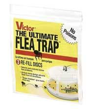 Universal Flea Trap Refill For Ultimate Flea Trap
