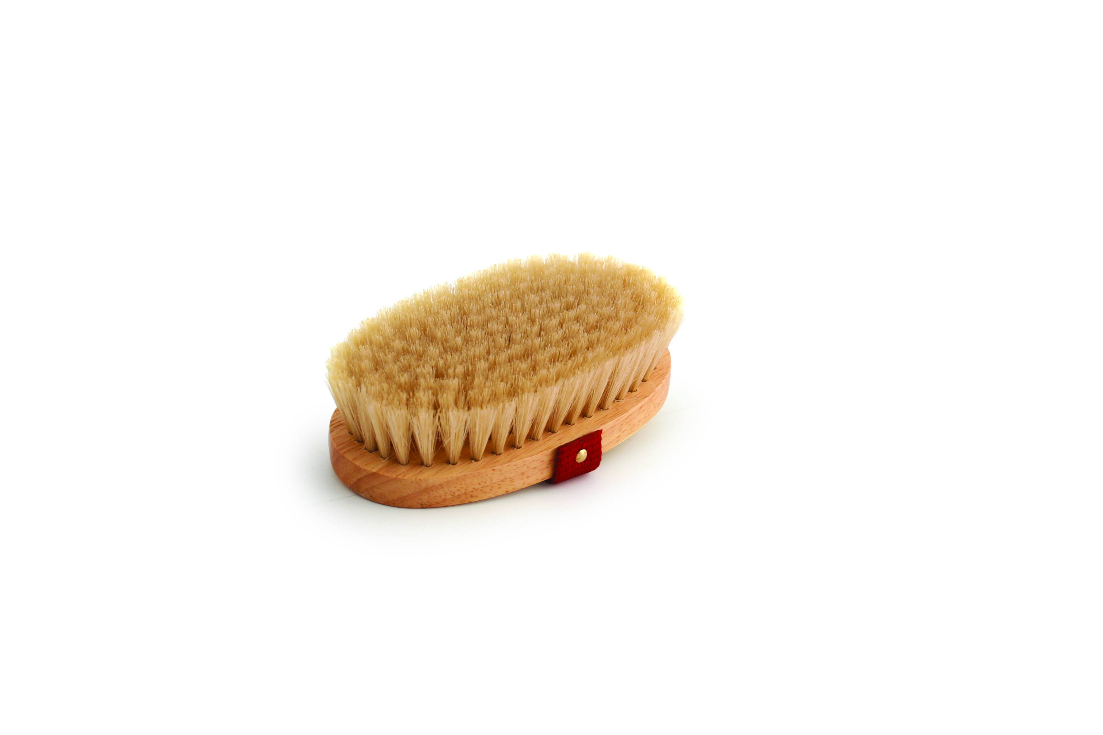 Legends Mini Boar Bristle Show Brush