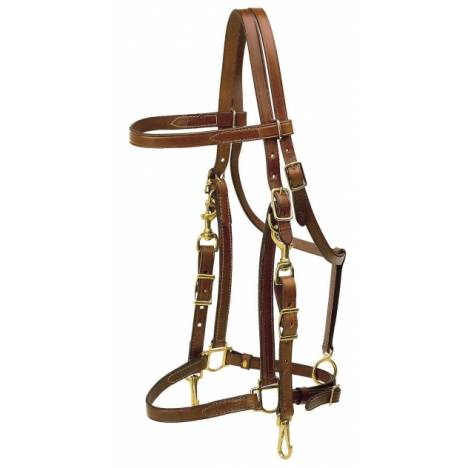 TORY LEATHER Halter/Bridle Combination Trail Bridle - Brass Hardware