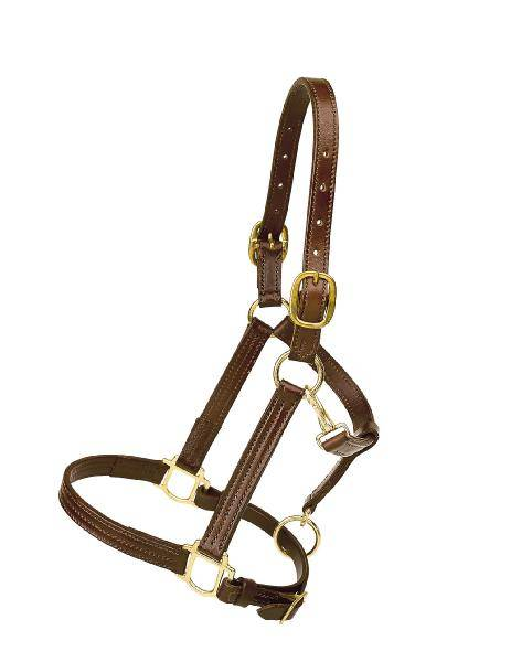 TORY LEATHER Triple Stitched Halter - Flat Throat & Brass Hardware