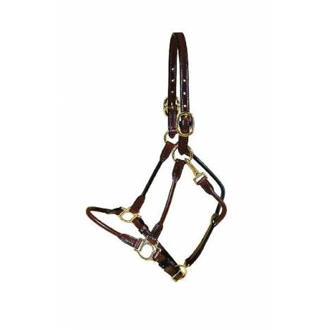 TORY LEATHER Arab Halter - Brass Hardware