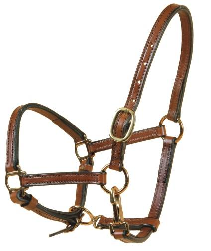 TORY LEATHER 5/8'' Halter - Crown Buckle & Brass Hardware