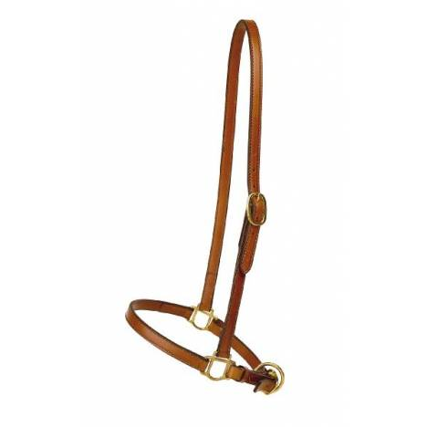 TORY LEATHER 3/4'' Grooming Halter - Brass Hardware