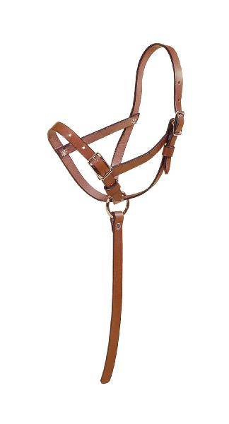 TORY LEATHER Leather Riveted Slip Foal Halter