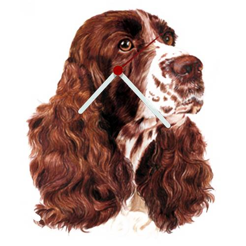 English Springer Spaniel Head Shaped Clock