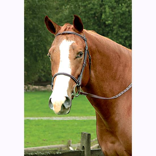 Legacy Plain Raised English Work Bridle
