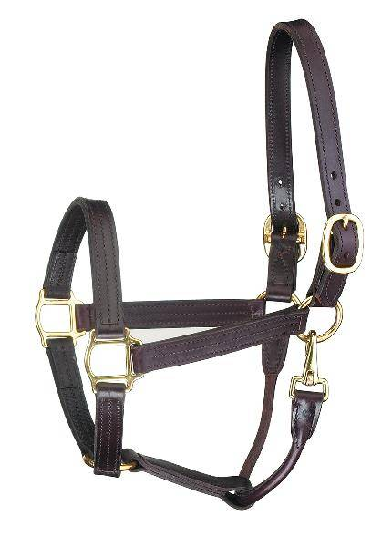 Perri's Premium Track Style With Snap Leather Show Halter