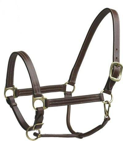 Camelot Stable Halter Weanling