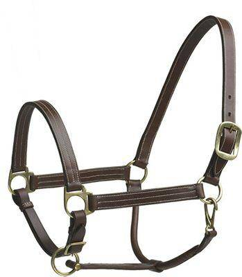 Camelot Stable Halter Cob
