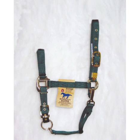 Hamilton Halter Adjustable Chin With Snap