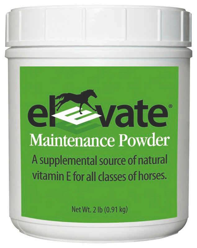 Elevated Natural Vitamin E for horses