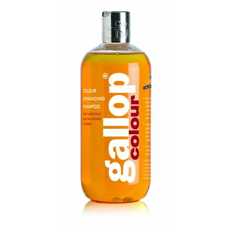 Carr & Day & Martin Gallop Colour Shampoo