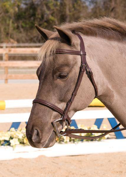 Henri de Rivel Club Plain Raised Snaffle Bridle with Laced Reins