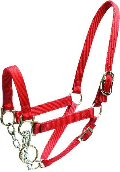 abetta cattle control halter on lovemypets.com