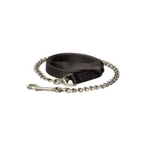 Abetta Flat Nylon Lead with Chain/Snap