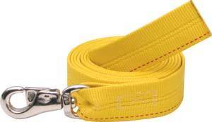 Abetta Heavy Duty Lead with Bull Snap
