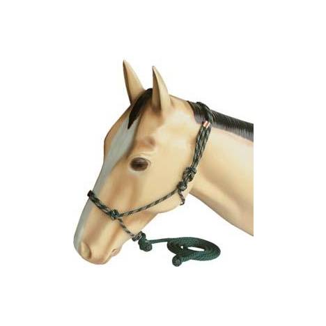 Abetta Tied Rite Mountain Halter with Lead
