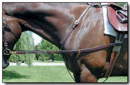 Nunn Finer Leather with Elastic Side Rein