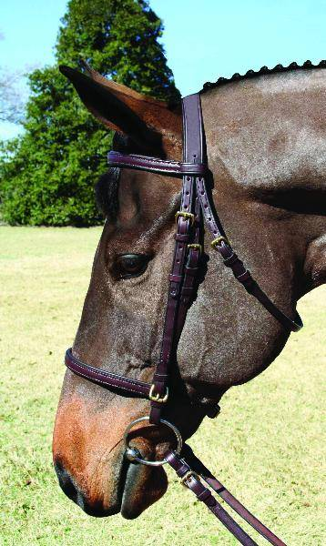 Nunn Finer Event Bridle