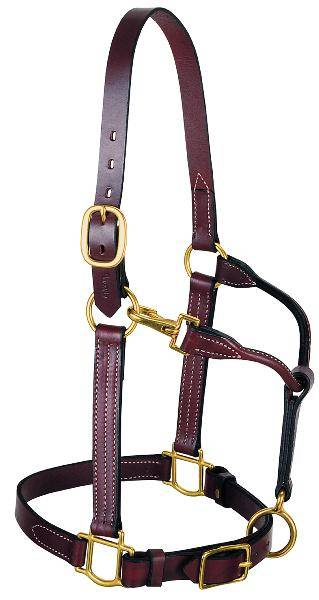 Weaver 3-in-1 All Purpose Leather Halter