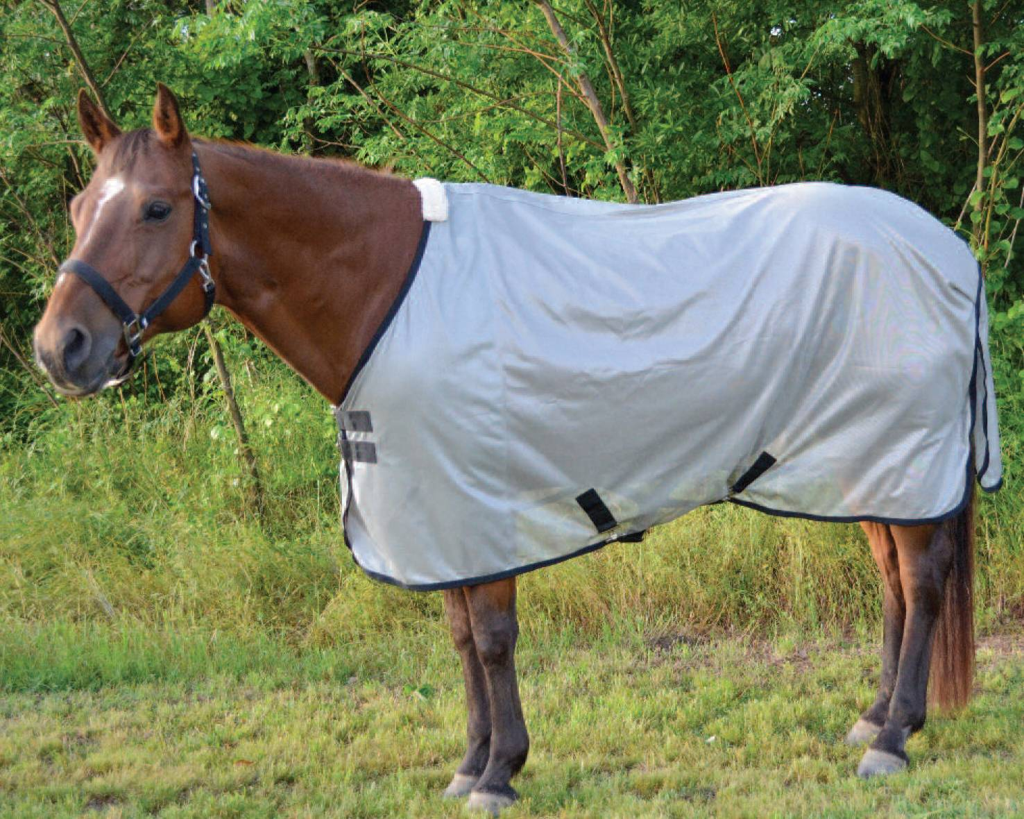 Equi Sky Fly Sheet