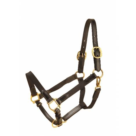 TORY LEATHER 1'' Nylon Halter - Leather Tabs