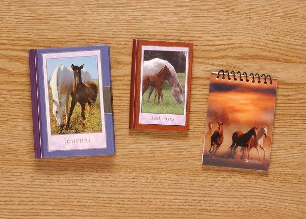 Gift Corral Horse Spiral Notebook