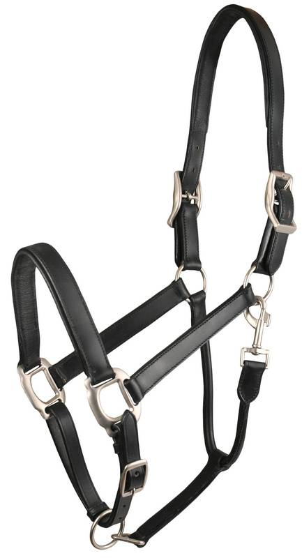 Gatsby Adjustable Padded Leather Halter