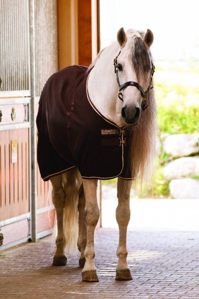 Rambo Stable Blanket M/F Lin Med