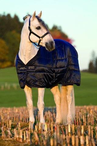 Horseware Mio Stable Blanket MW