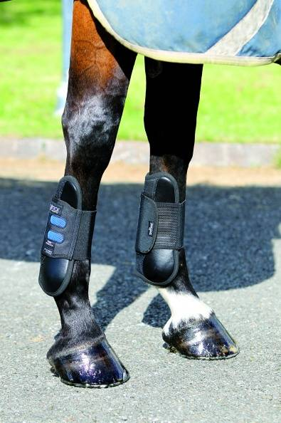 Dalmar SJ O/F Tendon Light