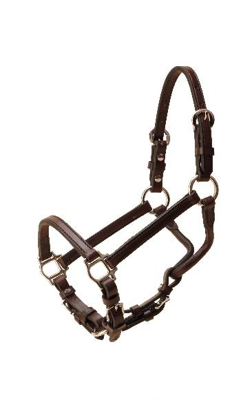 TORY LEATHER Weanling Show Halter - Nickel Hardware & Chain Lead
