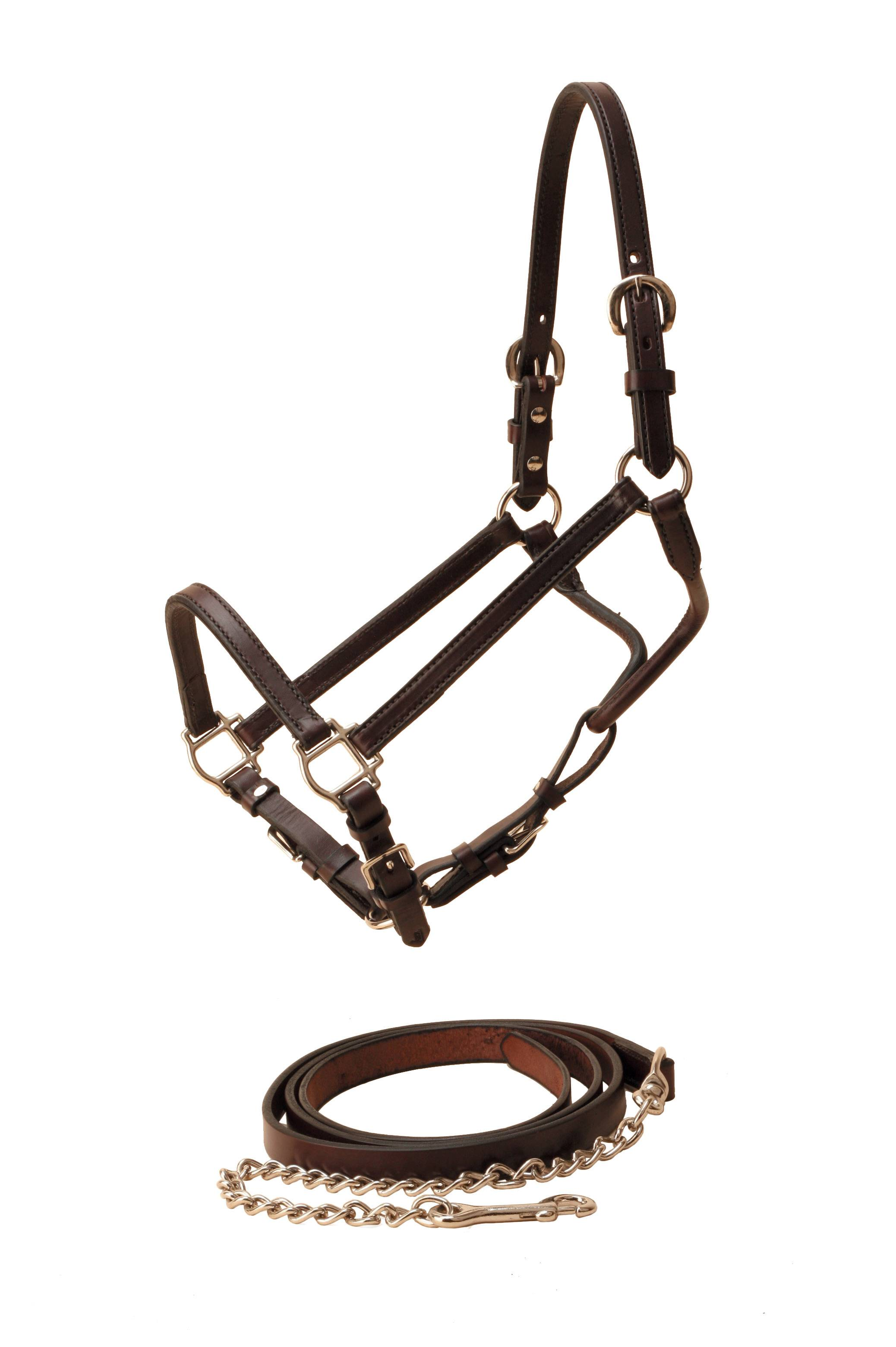Tory Leather Show Halter & Chain Lead