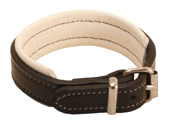 TORY LEATHER 1/2'' Padded Leather Bracelet with Nickel Buckle
